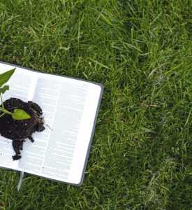 30554_Grow_in_the_Bible_-_Corner
